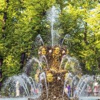 Большой фонтан в Летнем саду :: Valerii Ivanov
