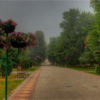 Туман, утро :: Nikita Volkov