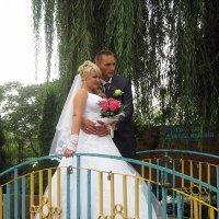 Был жених серьезным очень, а невеста ослепительно была молодой! :: Валентина ツ ღ✿ღ