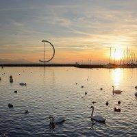 Женевское озеро на закате 2 :: Valeriy(Валерий) Сергиенко
