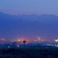 Almaty :: Елена Сергиенко