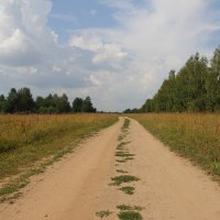 Проселочная дорога. :: Андрей Вычегодский