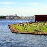 Питерское лето :: Ирина Фирсова