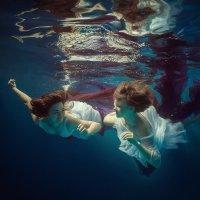 Will dive? :: Дмитрий Лаудин