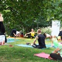 Йоги в парке :: Андрей Зайцев