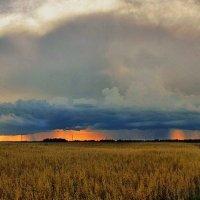 дожди августа :: Pavel Stolyar