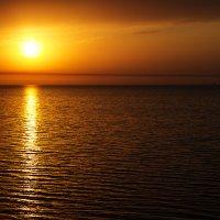 Таганрогский залив. Ейск. :: Ольга Русецкая