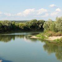Река Воронеж :: Алексей Москалев