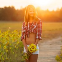 Sunflowers :: Алексей Щетинщиков