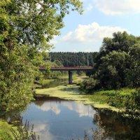 Река :: Татьяна Сухова