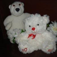 Белые мишки :: Нина Корешкова