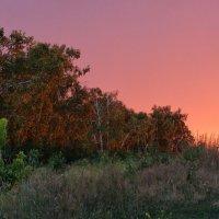 Взгляд в закат :: Serz Stepanov