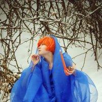 Зимняя сказка :: Юлия Лемехова