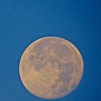 луна :: Валерий Дворников
