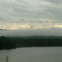 Туман :: Мария Жуковская