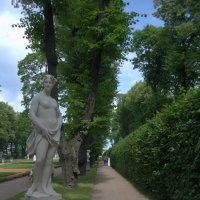 Скульптуры Летнего сада :: Stasya Cherepanova
