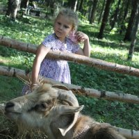Дважды просить не буду.... :: Tatiana Markova