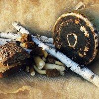 Натюрморт с грибами. :: Елена Прихожай