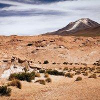 Пустыня Дали :: сергей агаев