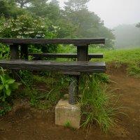 На туманной вершине горы Sengen :: Nina Uvarova