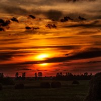 Закат над полем. :: Анатолий Клепешнёв
