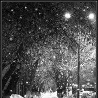 А снег идёт... :: Ирина