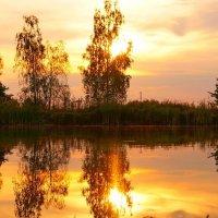 На закате :: Алексей Ревук