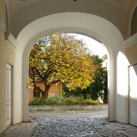 Осень во дворе :: Юрий Муханов
