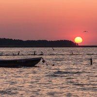 Утро у залива... :: Sergej Mariskin
