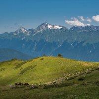 В горах :: Olga Shatilina