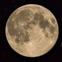 Луна :: Роман Пеньков