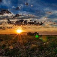 Закат над полем. 02. 13.08.2014. :: Анатолий Клепешнёв