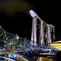 Ночной Сингапур :: Елена Шемякина