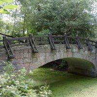 Мост в Екатерингофском парке :: Эльф ```````