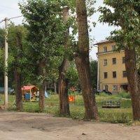 Игровая площадка во дворе :: Наталья Золотых-Сибирская
