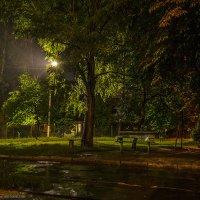 Дождливый вечер... :: Богдан Петренко