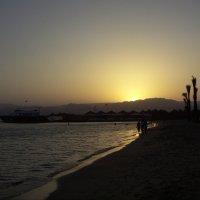 Закат на Красном море. :: Виктор Елисеев