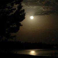 Ночь и луна. :: Анна