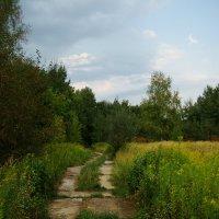 Будни парка DSC07395 :: Андрей Лукьянов