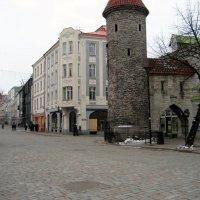 Таллин :: laana laadas