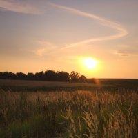 Солнце клонилось к закату... :: Владимир Маслов