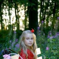 Красная шапочка. :: Тамара Тамара
