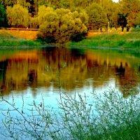 Как в зеркале отражение :: Лидия (naum.lidiya)