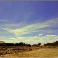 Огромное синее небо :: Igor Khmelev
