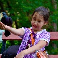 Девочка кормит голубя. :: Виталий Дарханов