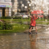 Монетный дождь :: Andrew (Андрей Ветров)