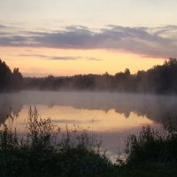 Туманное утро :: Вера Хомичевская