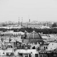 северная столица России :: Андрей Ракита