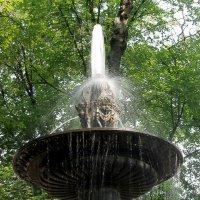 Старый фонтан :: Вера Моисеева