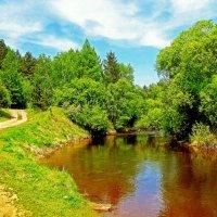 Река Олха :: alemigun